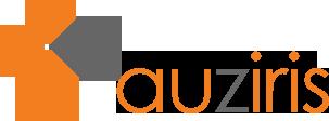 auziris - création gestion desite web