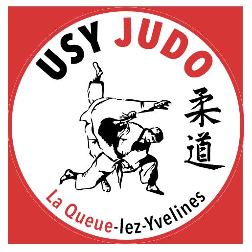 logo-usy-ico